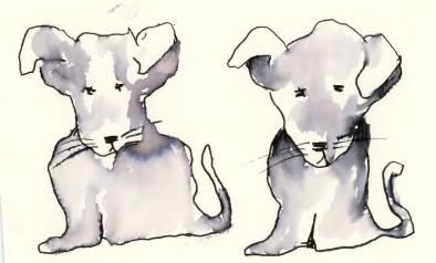 dog1 blog