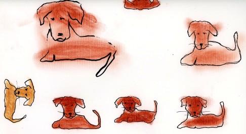 dog2 blog
