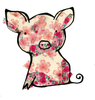 washi pig